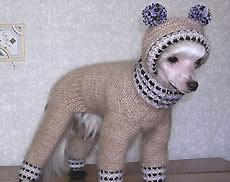 Вязаная одежда для китайской хохлатой собаки